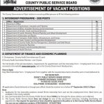 ADVERTISEMENT OF VACANT POSITIONS: COUNTY AUDIT COMMITTEE